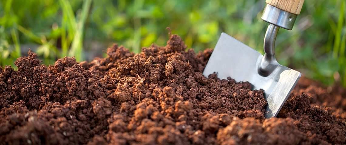 Phân bón không làm cạn kiệt đất