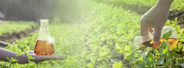 Những điều bạn cần biết về hóa chất nông nghiệp (Hình 4): Tác động đến môi trường của hóa chất nông nghiệp