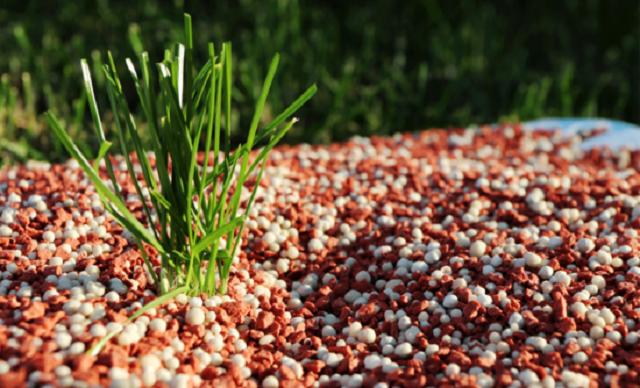 Ảnh hưởng của việc sử dụng phân bón và hóa chất bảo vệ thực vật trong sản xuất nông nghiệp và môi trường - Ảnh 4