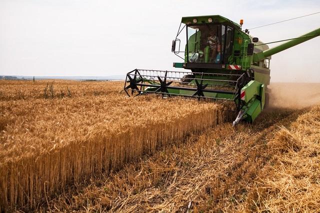 Hóa chất nông nghiệp: Ứng dụng trong cuộc sống (Hình 7): Hóa chất nông nghiệp giúp giải quyết cácvấn đề sau thu hoạch