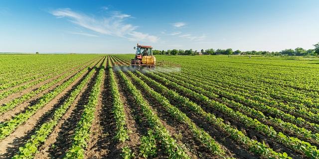 Hóa chất nông nghiệp: Ứng dụng trong cuộc sống (Hình 1): Hóa chất nông nghiệp là gì