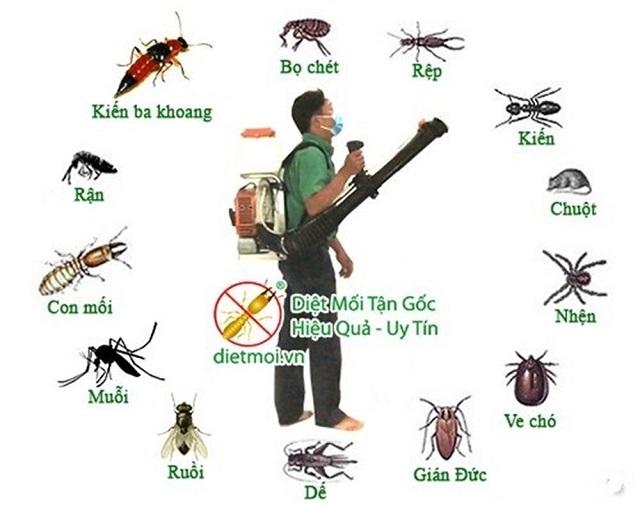 Lập lờ giữa thuốc bảo vệ thực vật và chế phẩm diệt côn trùng - Ảnh 2