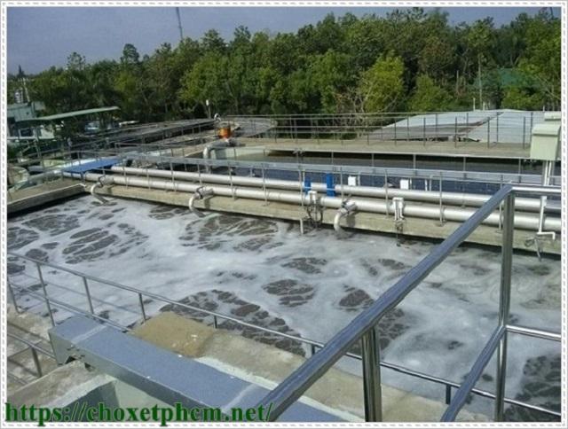 Ngành công nghiệp hóa chất gây nguy cơ ô nhiễm môi trường - Ảnh 2