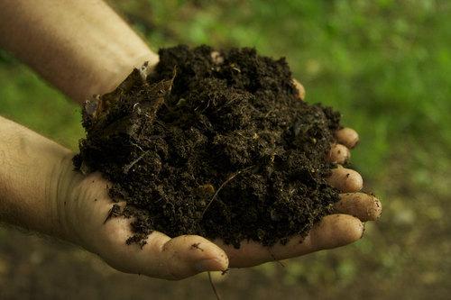 Phân bón hữu cơ là gì