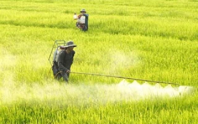 """""""Tam nông"""" thời nay và làm gì với hóa chất nông nghiệp? - Ảnh minh họa"""